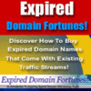 Thumbnail HOW TO MAKE A FORTUNE WITH EXPIRED DOMAIN NAMES RESALE RIGHT
