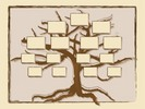 Thumbnail FAMILY TREE HISTORY GENEALOGY RECORDS SOFTWARE + BONUS