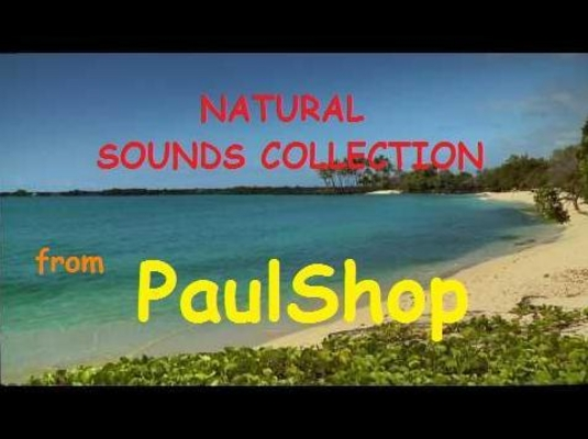 Product picture MP3 6 NATURAL SOUNDS COLLECTION RELAXATION RELAXING MUSIC