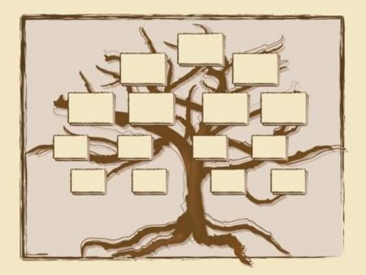 Product picture FAMILY TREE HISTORY GENEALOGY RECORDS SOFTWARE + BONUS